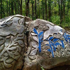 পাথুরে ক্যানভাসে খোদাই পাখির কেরামতি, তাক লাগাচ্ছে পুরুলিয়ার পাখি পাহাড়