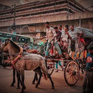প্রয়োজন ফুরোলেও হারায়নি অস্তিত্ব! ঢাকার রাজপথে আজও দাপাচ্ছে 'টমটম'